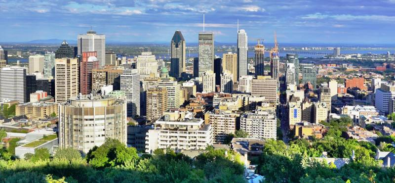The skyline of Montreal with green trees and gleaming skyscrapers