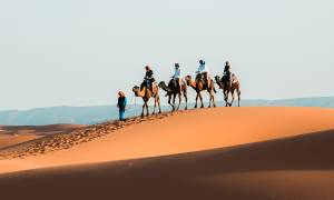 Morocco For Teens 2019 - Main Image - Camel Caravan in Moroccan Desert