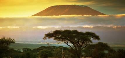 Mount Kilimanjaro Main