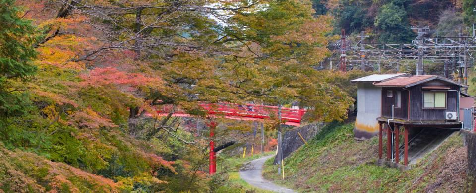 Station within the autumn-coloured trees on Mount Koya