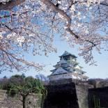 Osaka Castle | Osaka | Japan