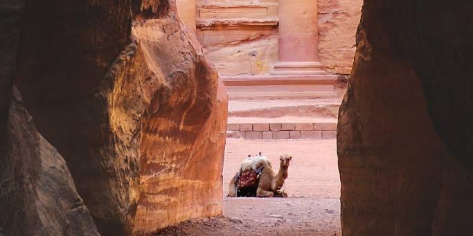 The Siq | Petra | Jordan
