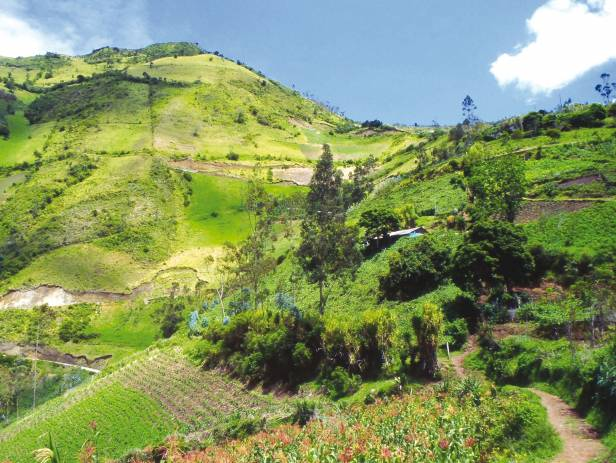 The stunning, green landscape that makes up Banos