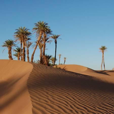 Rock-The-Kasbah-Itinerary-Main-Xmas-and-New-Years-Morocco