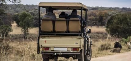 Safari truck with savannah landscape