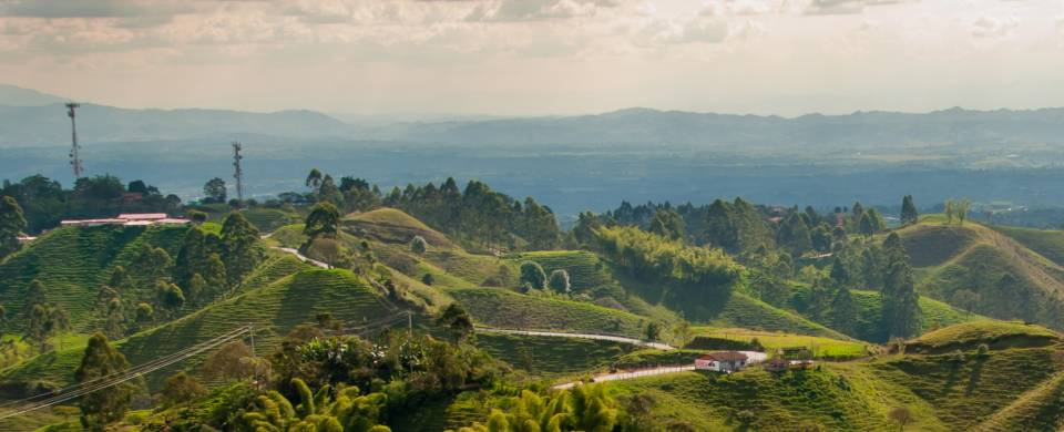 The lush landscape of Colombia's coffee region near the town of Salento
