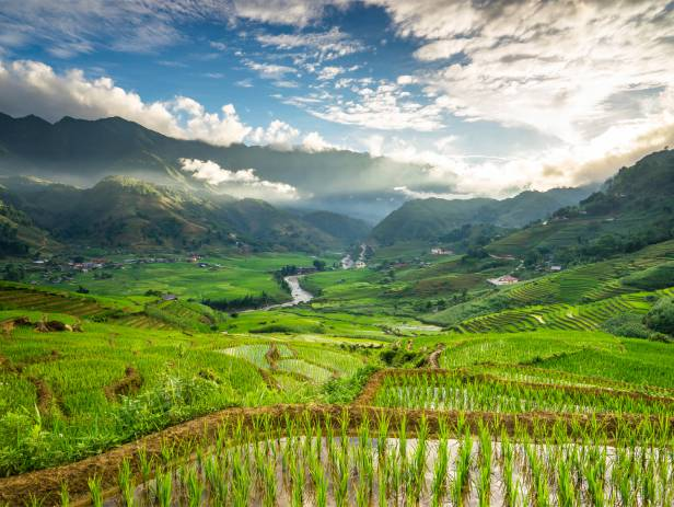 View of the verdant countryside in Sapa