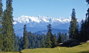Shimla Landscape - India Tours - On The Go Tours