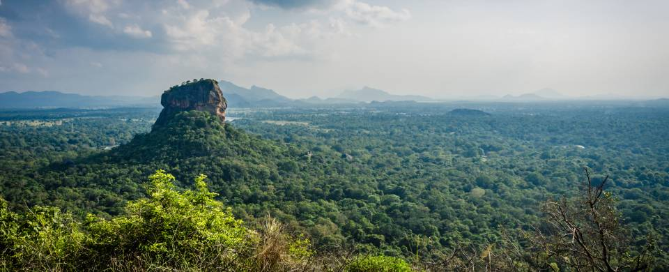 Iconic rock sitting among lush vegetation in Sigiriya
