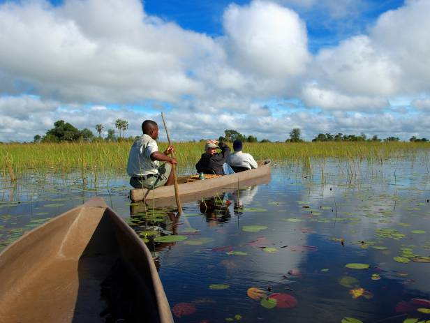 Mokoro boat gliding along the Okavango River