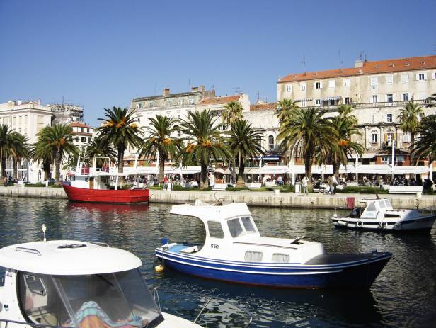 View of the main strip of Split, lined with palm trees along the waterfront