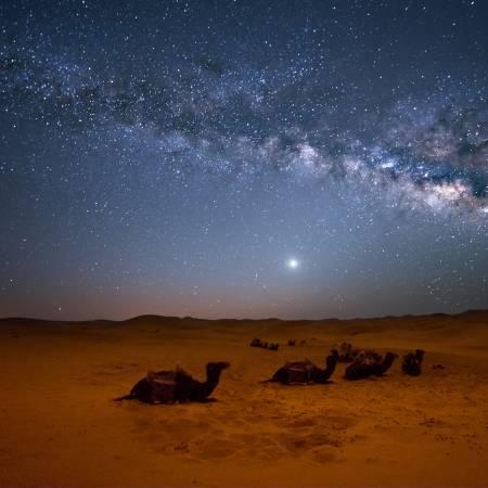 Stars over Sahara