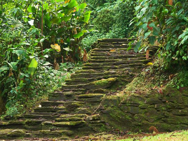 The circular terraces of the Ciudad Perdida, Colombia's Lost City