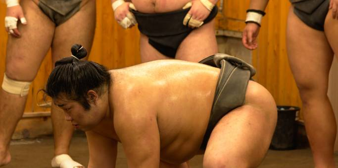 Sumo ready.jpg