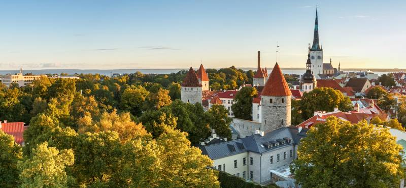 The skyline of Tallinn in Estonia with its church spires and greenery