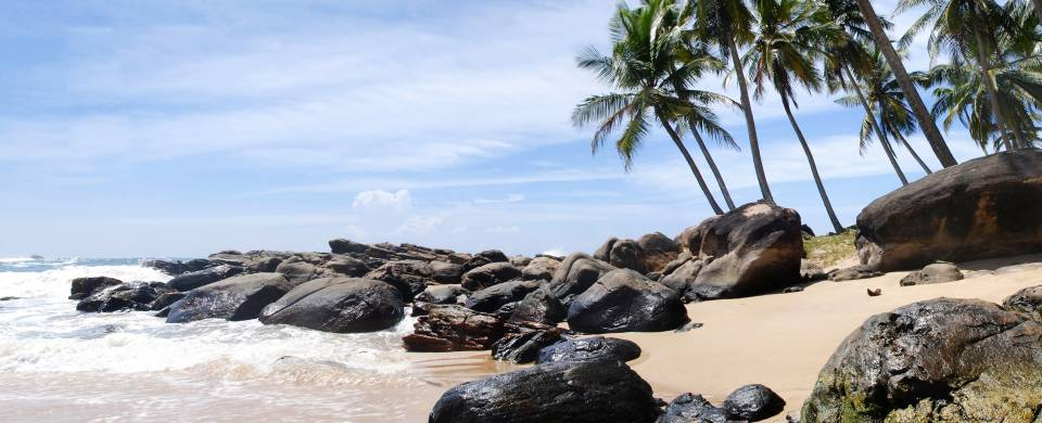 Rocky beach and palm trees in Tangalle