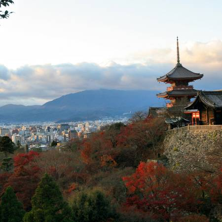 The Kyoto Basin-Japan Tours-On The Go Tours