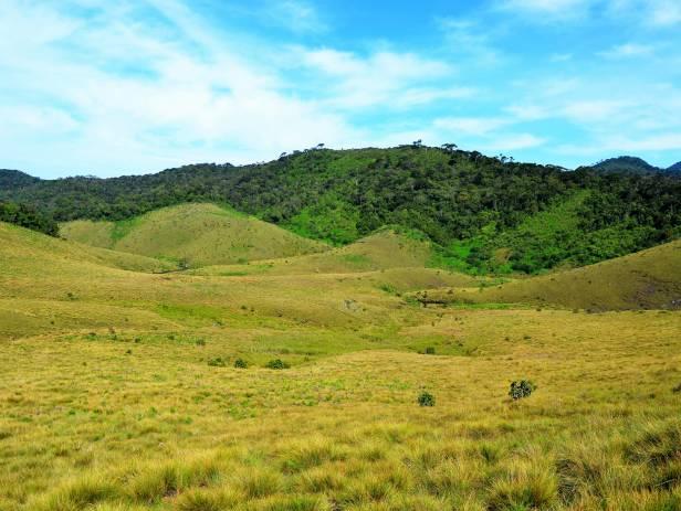 Horton Plains in Sri Lanka
