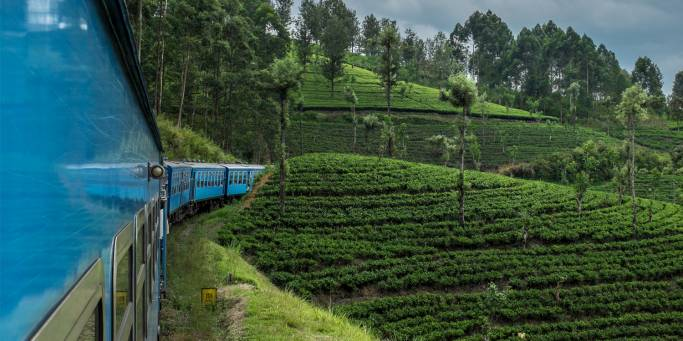 Train to Nuwara Eliya | Sri Lanka