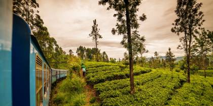 Train in hill country - best time to visit Sri Lanka - On The Go Tours