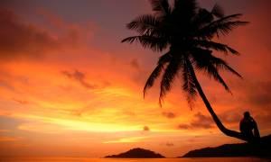 Tropical-Goa-Bolt-Ons-India