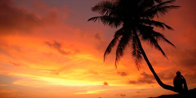 Beach sunset | Goa | India