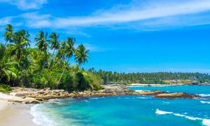 Untouched tropical beach - Sri Lanka Tours - On The Go Tours