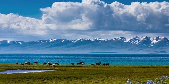 Song Kol Lake | Kyrgyzstan