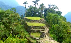 View of the Lost City - Colombia Tours – On The Go Tours