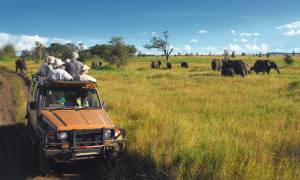 Wild-About-Tanzania-Itinerary-Main-Tailor-made-Holidays-Africa