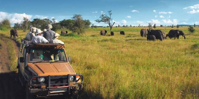 On safari | Serengeti | Tanzania