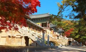 itinerary-main-Korea-6-day