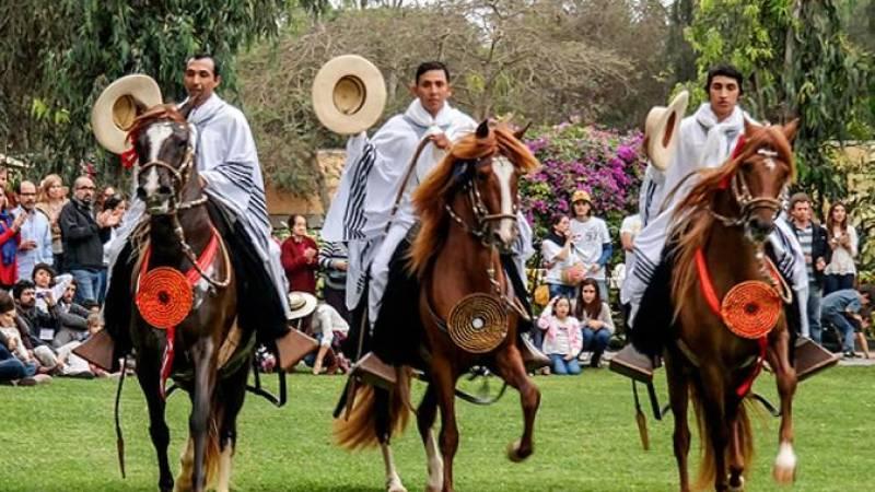 Pachacamac & Peruvian Paso Horse Show