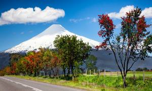 vines-lakes-volcan-escapes-main-itinerary-private-tours-chile